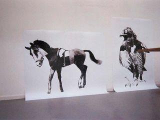 Over Affiches, Arti & Amicitiae